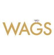 WAGS Miami Jessy J Photo