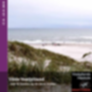 vildevestjylland-web_Side_1.png