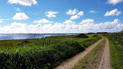 vandringer-i-vestjylland.jpg