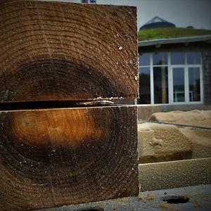 byg i træ2.jpg