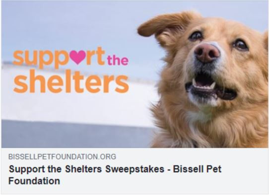 Bissell Support the Shelters