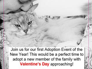 February Adoption Event
