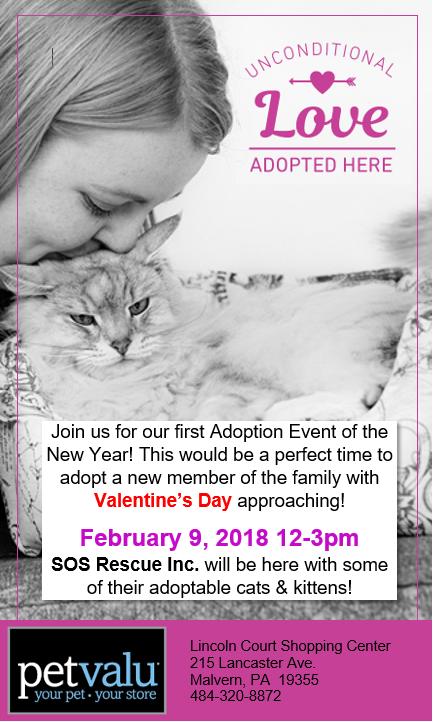 February Adoption Event - Pet Valu Malvern