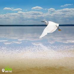 Lake Tuz (Salt Lake)