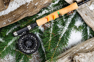 Christmas photo.jpeg