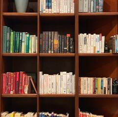 Pretty bookcase.JPG