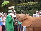 Experience Nairobi with OTA - Overland Travel Adventures