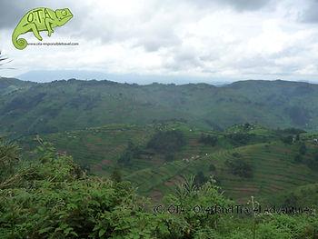 Beautiful Uganda, Kenya to Kigali Adventure, OTA