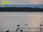 Lake Oloiden, Naivasha, Kenyan Safari, OTA - Overland Travel Adventures