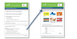 Survey & Reward Site Integration