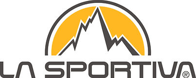 LS_logo 2006 graue schrift.jpg