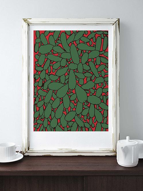 David Tartakover | Cactus 12
