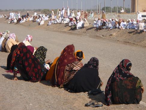 Camel racing Oman