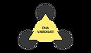 Modeller - DNA.png