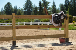 Lake Placid Horse Show