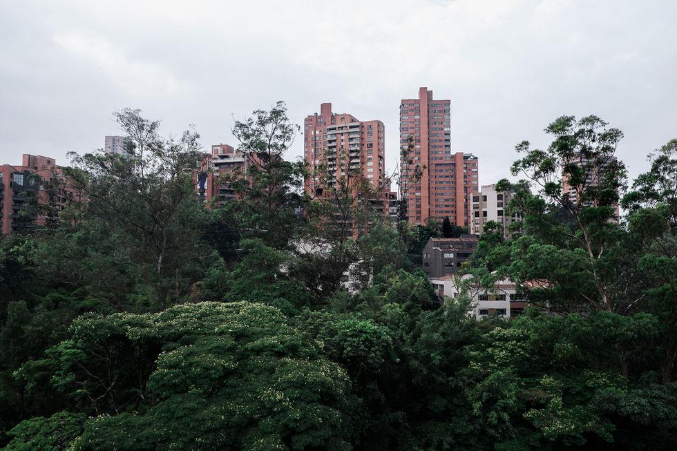 Medellín ciudad bosque verde