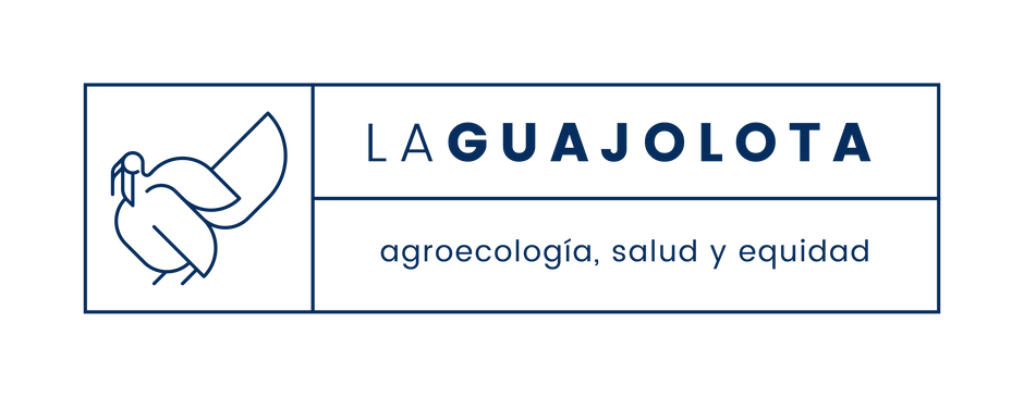 LaGuajolota-07.png