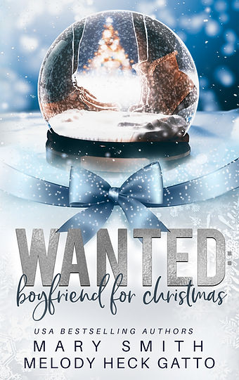 Wanted Boyfriend for christmas Mary Smit