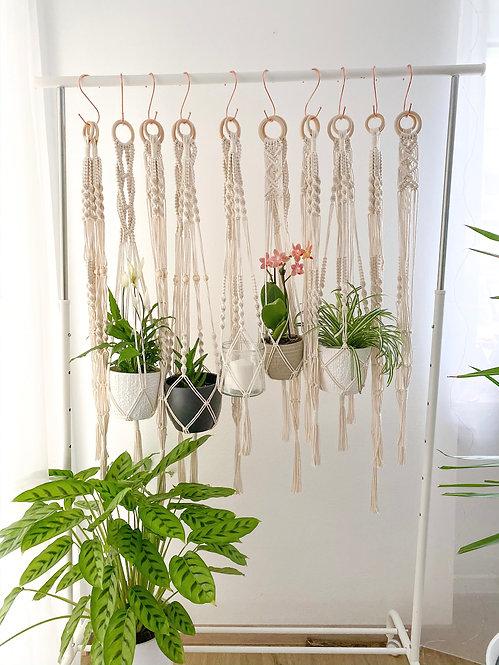 Pflanzenhänger - auch im Set