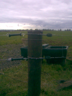 Double Electric Fence with Gap Handles Joining in to Strainer