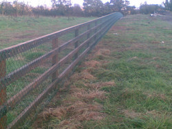 4 Bar Creosote P+R Fence With PVC coated chain link attached on front of fence