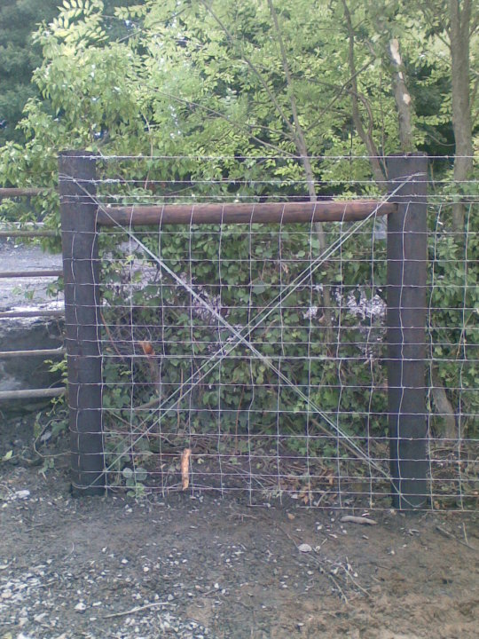 2 rows of sheepwire and 3rows of barbwire
