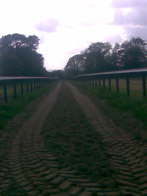 PVC Rail  (Tape) around Horse Gallop