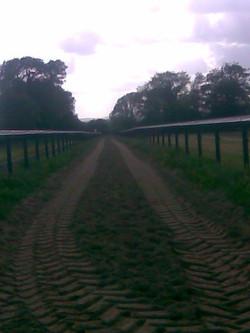 PVC Rail  (Tape) around Horse Gallop