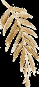 gold leaf 2.png