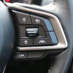 Steering Wheel - Right.JPG
