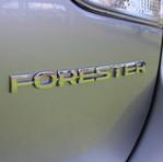 Forester Badge.JPG