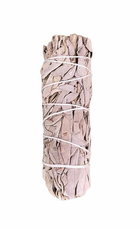SALVIA BIANCA - smudge stick