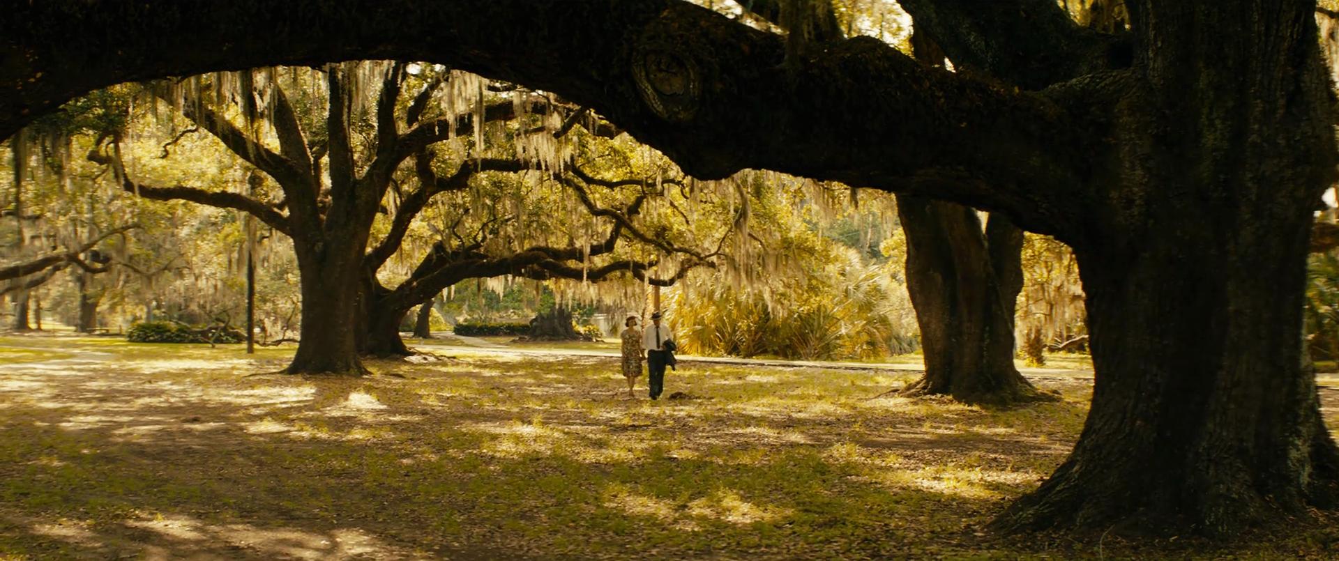 Mudbound (28)