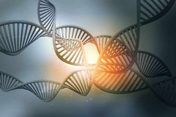 DNA-structure-983219820_3600x2400.jpeg