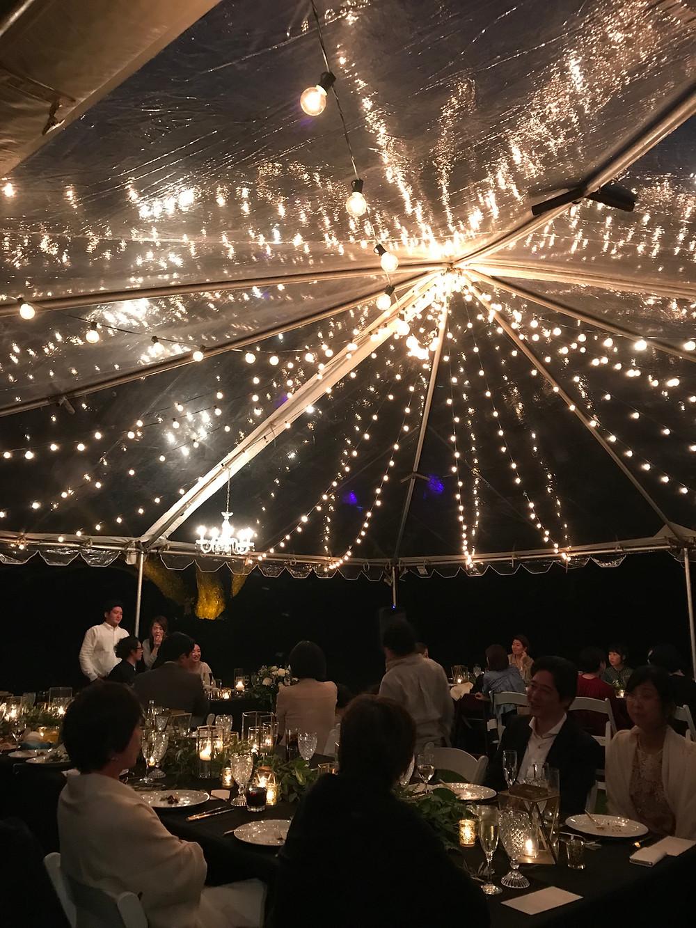 Garden Wedding Lighting