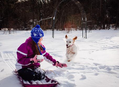 Winter Photo Mojo