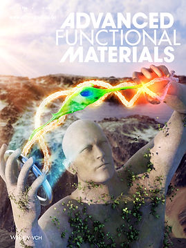 1250-5.Cover preview_ADVANCED FUNCTIONAL MATERIALS.jpg