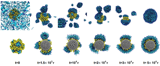 self assembly nanoparticle_1.png