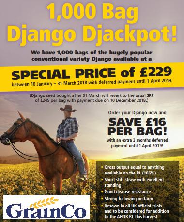 Django Djackpot!