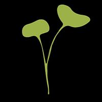 BM Logo new_edited.png