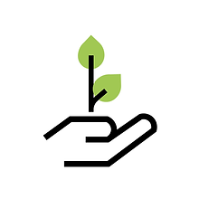 Boston Microgreens Health Benefits