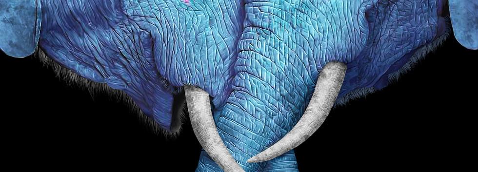 Elephant Kiss.jpg