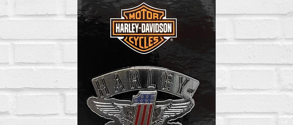 PIN 1 HARLEY-DAVIDSON MOTORCYCLES