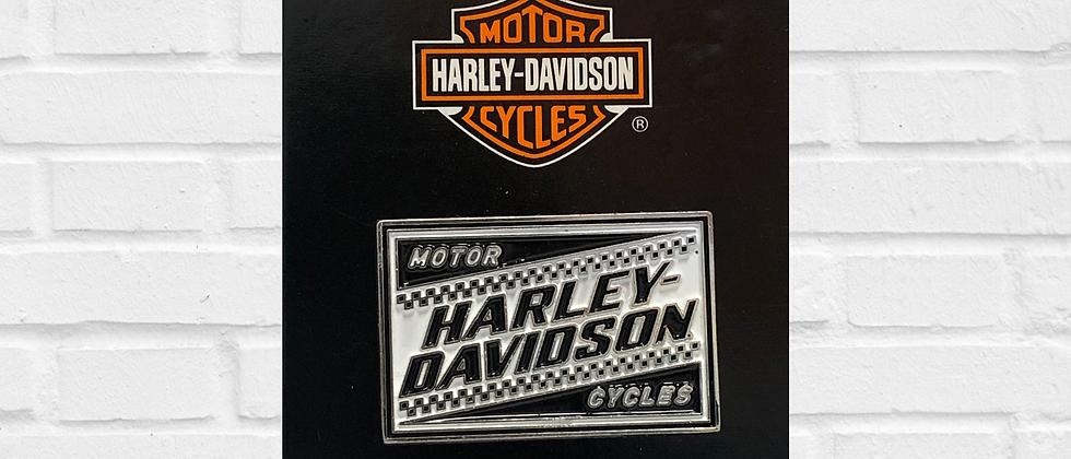 PIN MOTOR HARLEY-DAVIDSON CYCLES