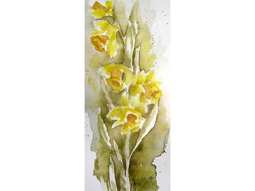 """Sketch for Daffodil Painting, 11"""" x 14"""""""