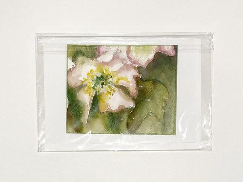 "Original Art Card - Hellibore 2, 5"" x 7"