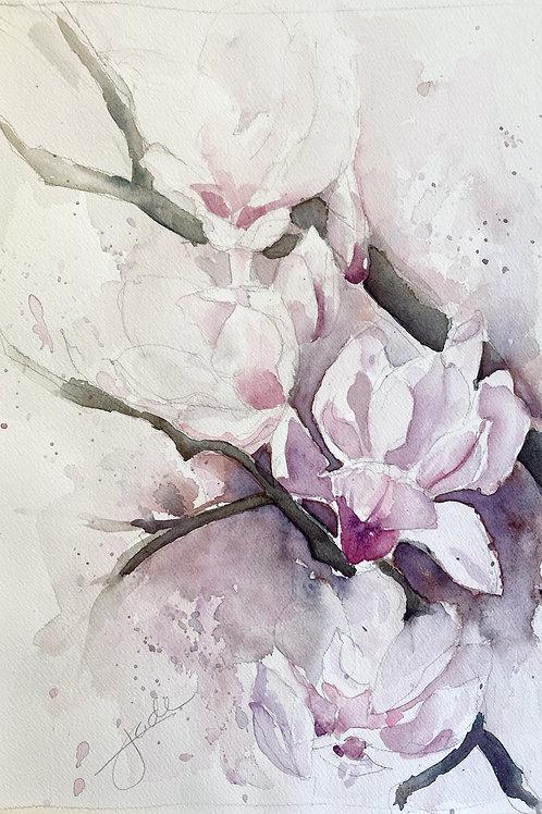 """Magnolias, 16"""" x 20"""""""