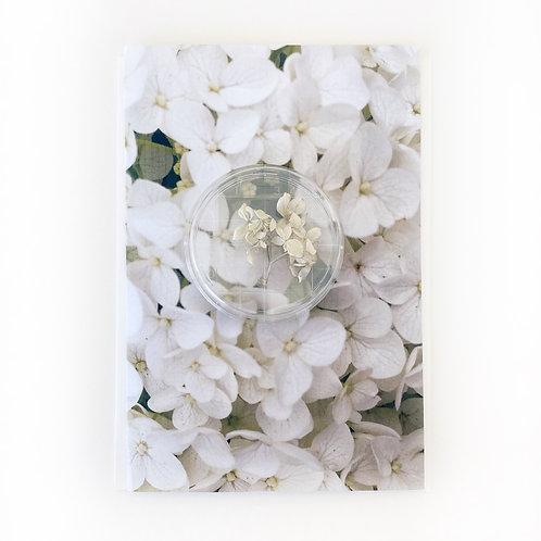 """Art Card - Rose Du Barre 3, 5"""" x 7"""""""