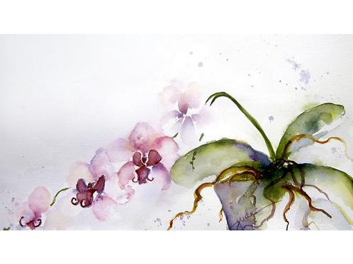 "Orchids 1, 14"" x 22"""