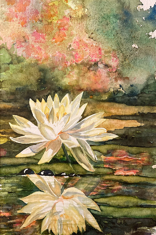 """Water Lily, 17"""" x 25"""""""